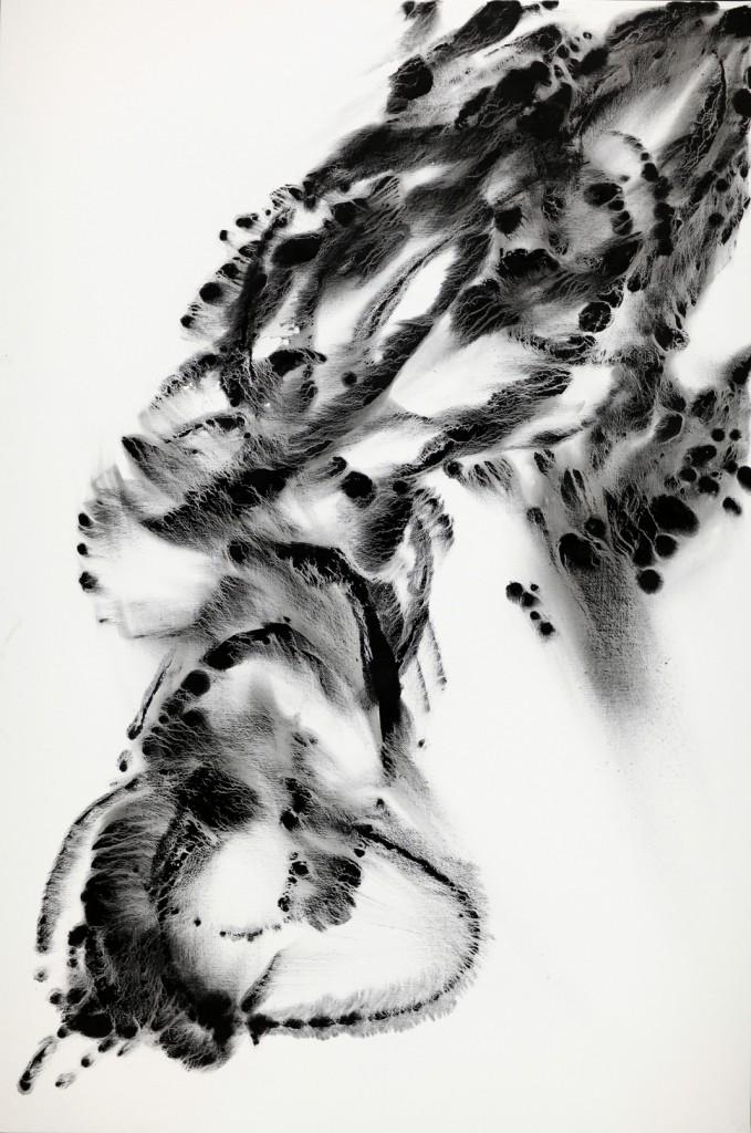 contemporary art paintings by mojgan moslehi and michel sicard, Sans titre de la série Dark energy, echnique mixte sur toile, 210 x 140 cm, 2012